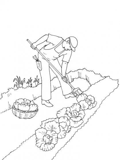 coloriage à dessiner outils du jardinier