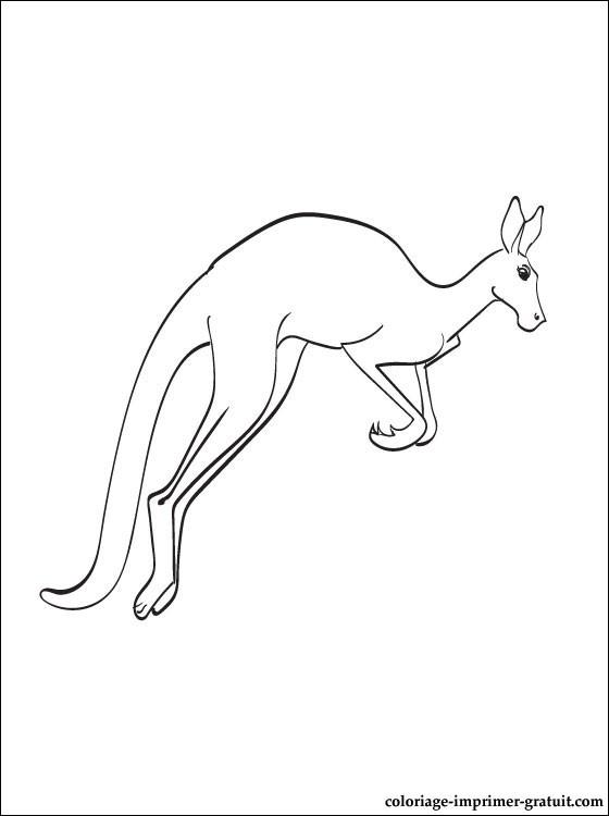 Dessin colorier kangourou gratuit - Kangourou dessin ...