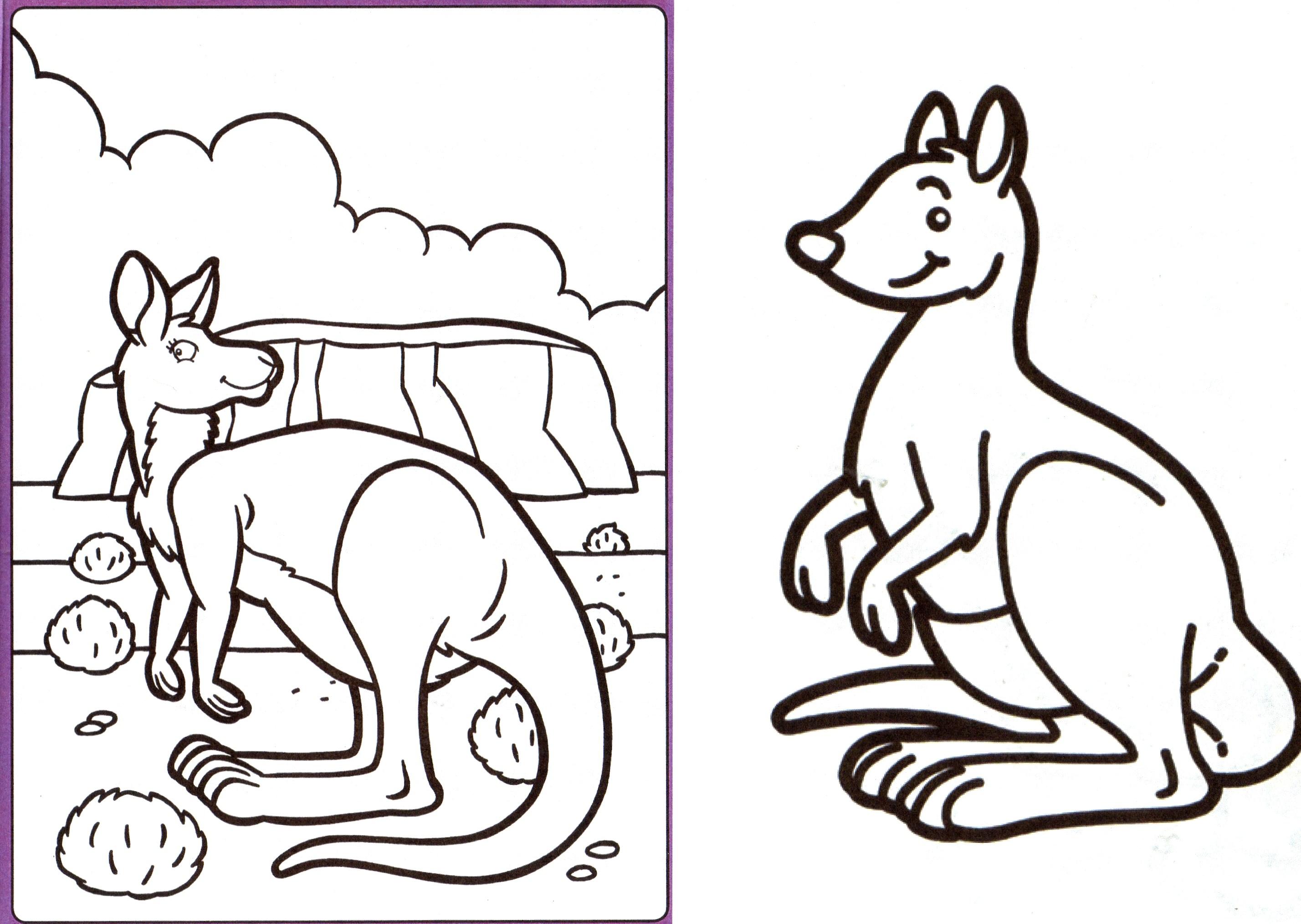dessin à colorier kangourou gratuit