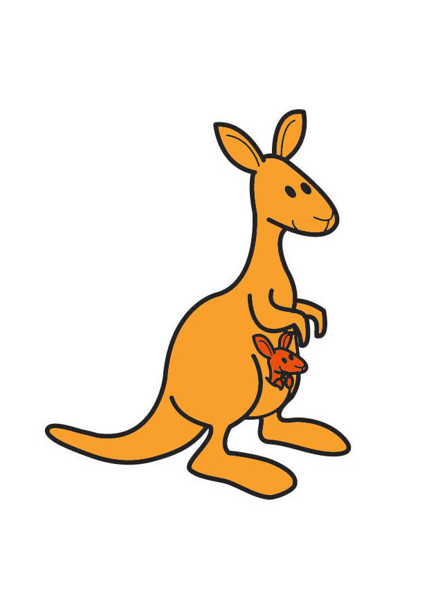 dessin magique kangourou