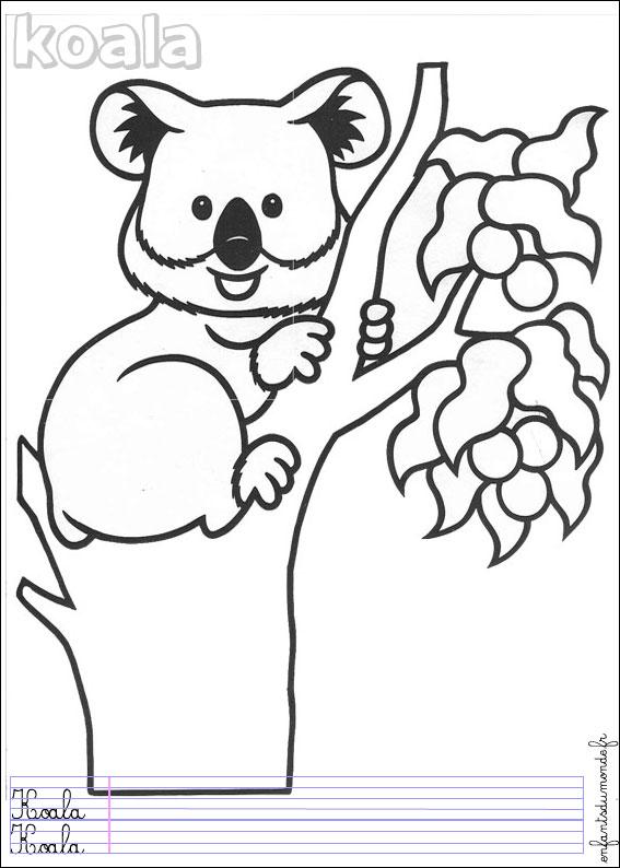 coloriage à dessiner petshop koala