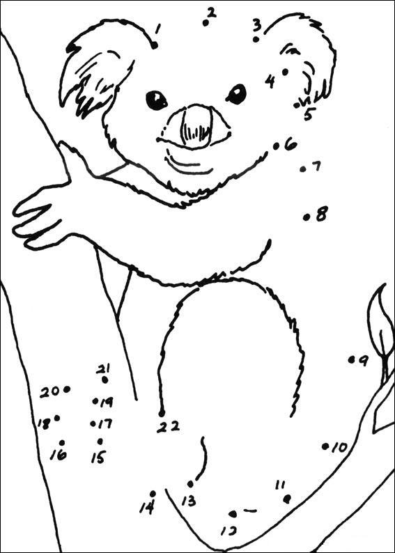 coloriage koala à imprimer