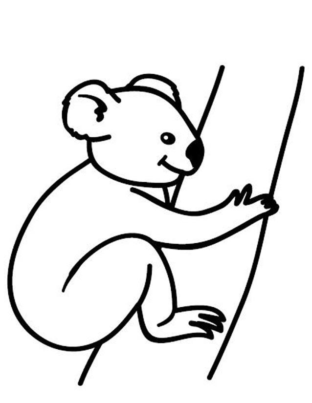 boowa et kwala dessin à colorier
