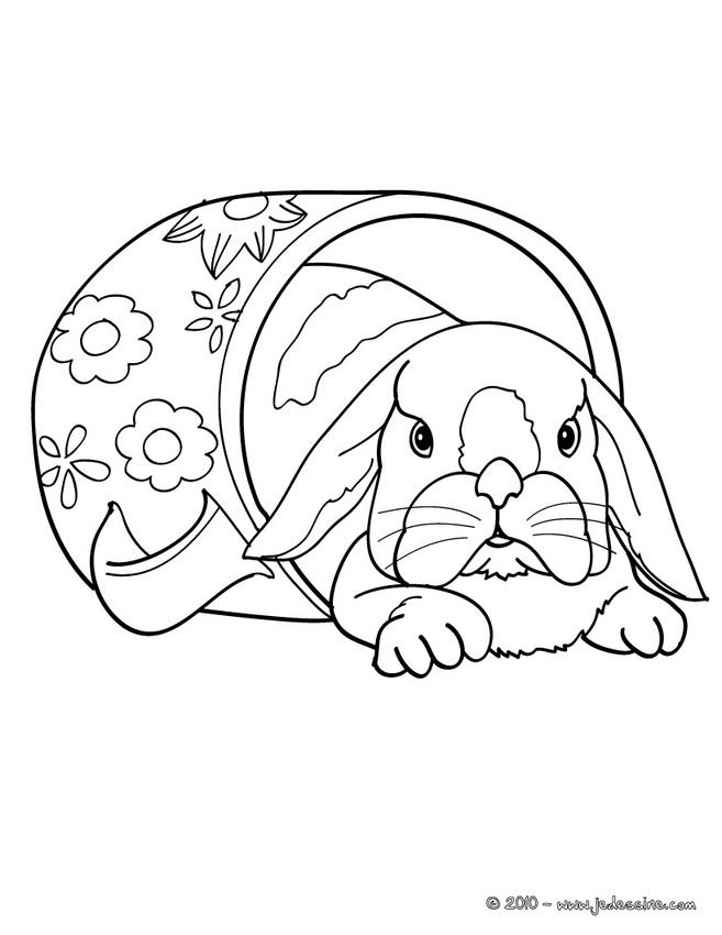 coloriage lapin dans clapier