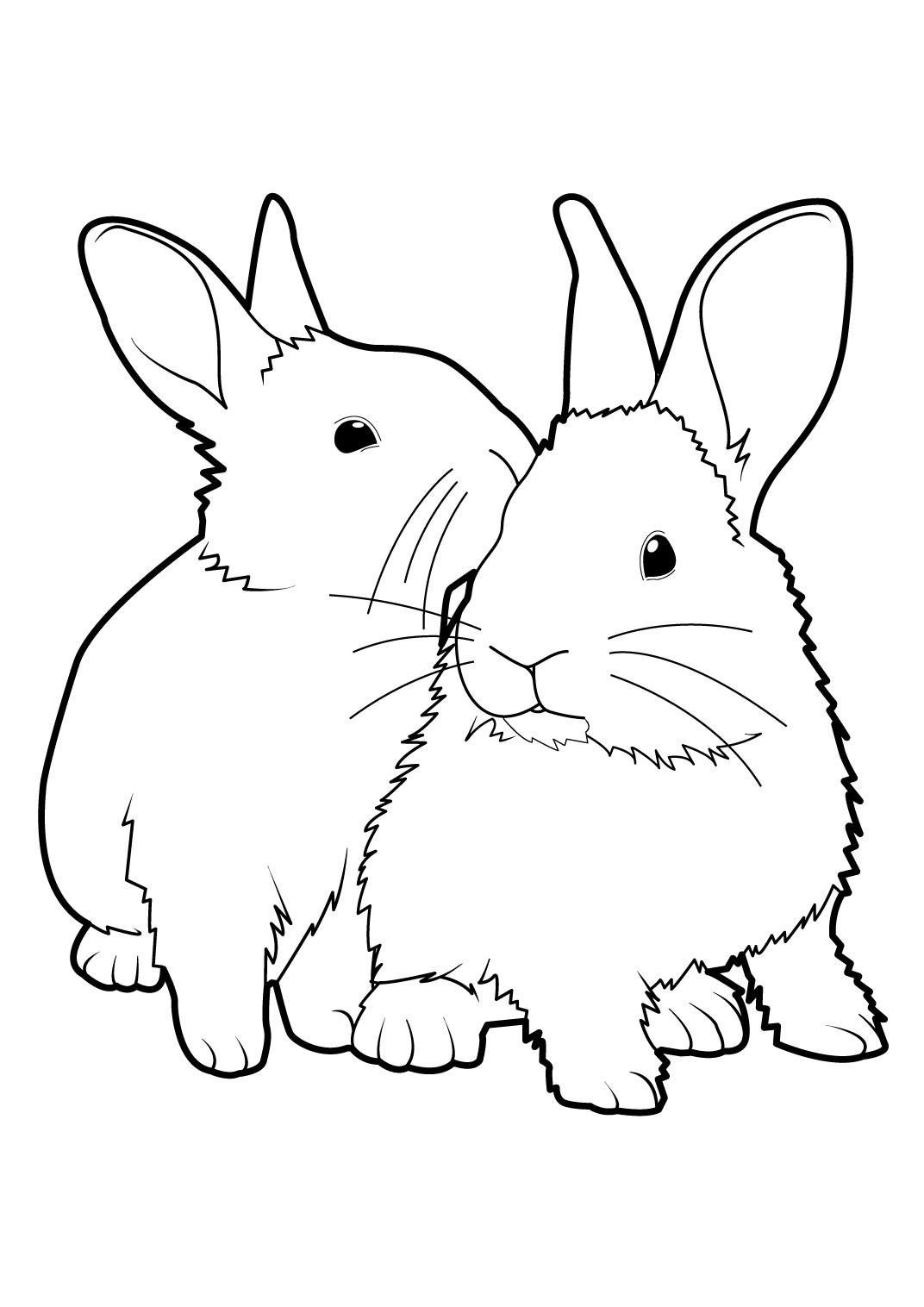 vrac coloriage lapin de paques