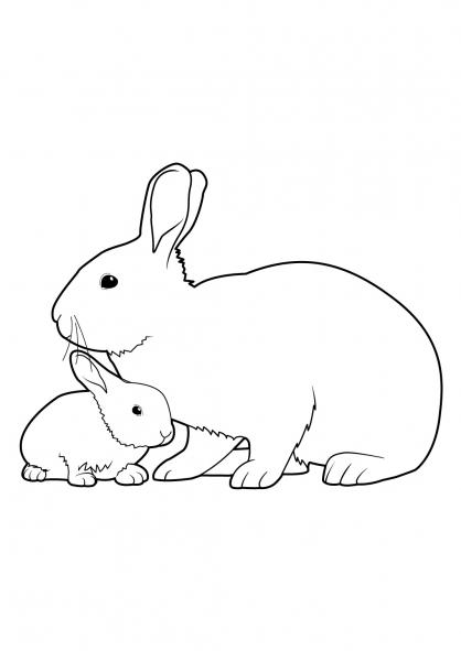 coloriage de lapin sur hugo l'escargot