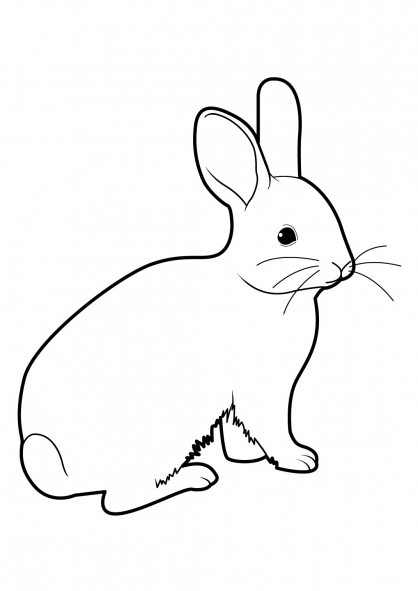 Coloriage lapin de garenne - Lapin en dessin ...