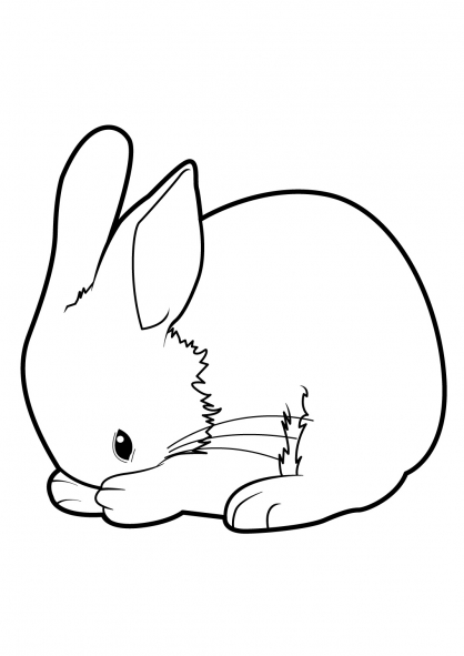 Coloriage a imprimer lapin nain - Lapin a colorier ...