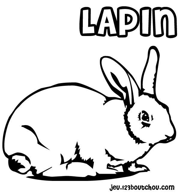 coloriage lapin hop