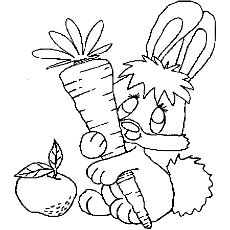 coloriage lapin terrier
