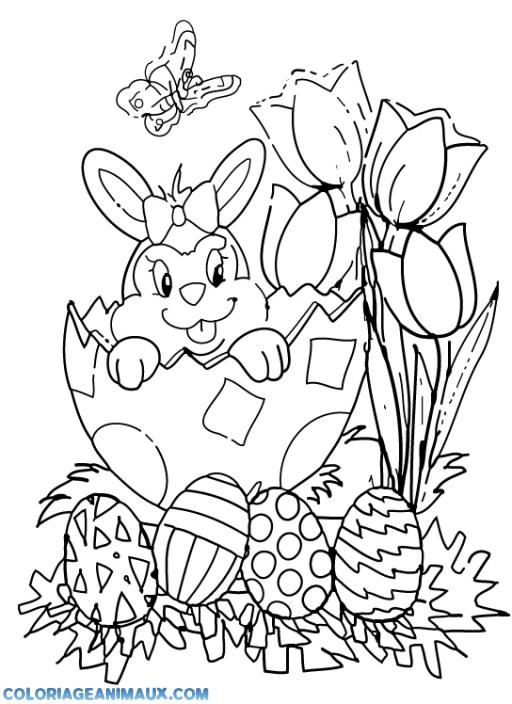 Coloriage lapin carotte - Coloriage a imprimer lapin ...