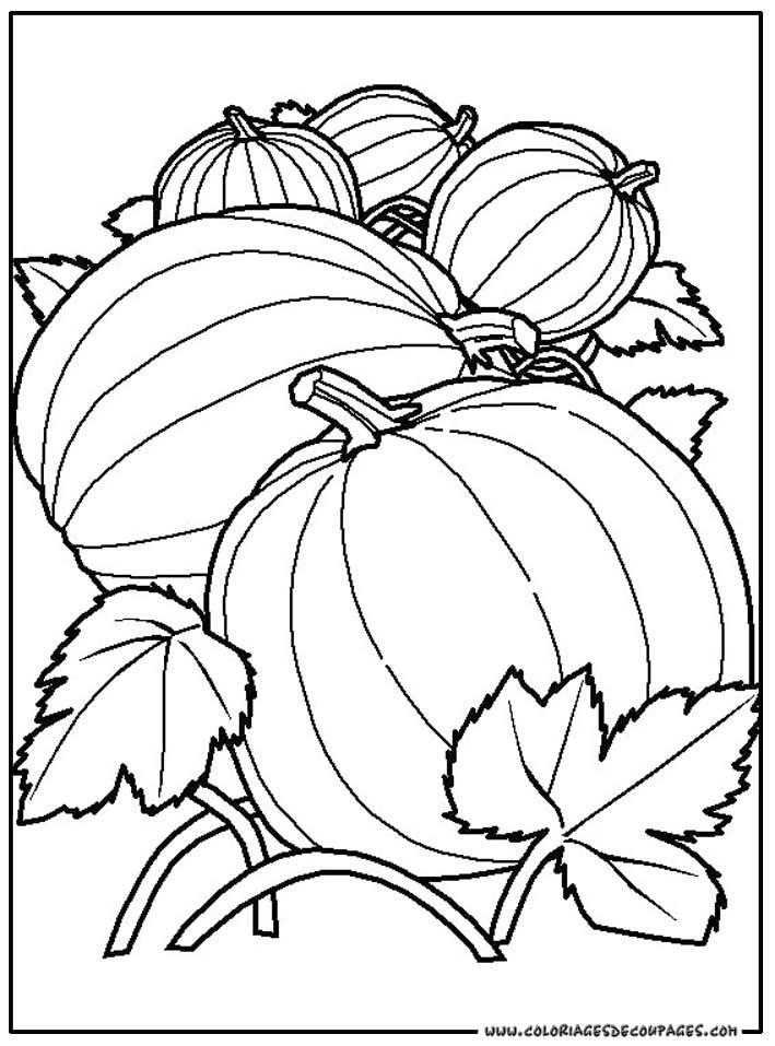 coloriage fruit legume rigolo