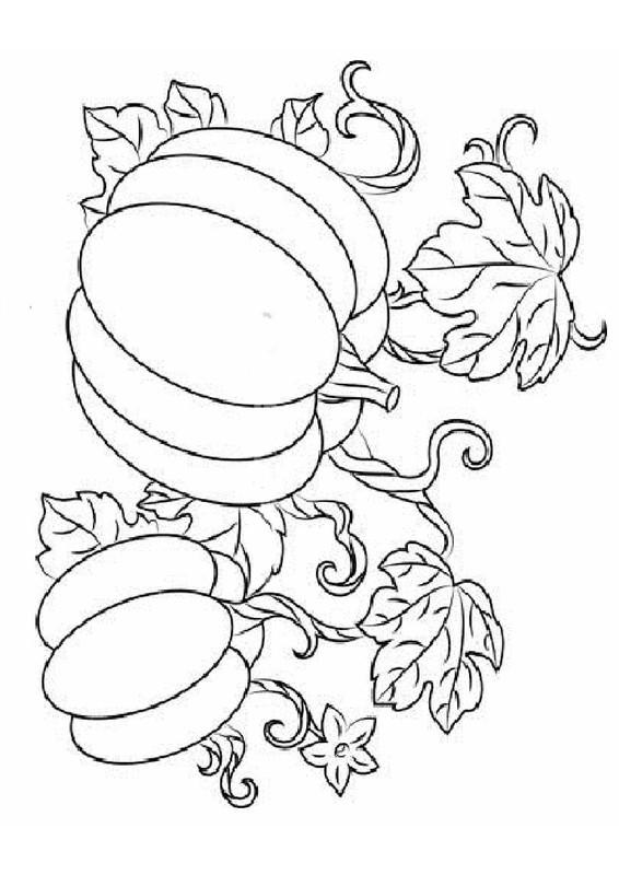 99 dessins de coloriage l gumes d 39 automne imprimer - Dessin d automne facile ...