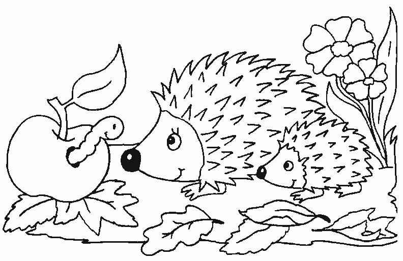 99 dessins de coloriage l gumes d 39 automne imprimer - Dessin sur l automne a imprimer ...