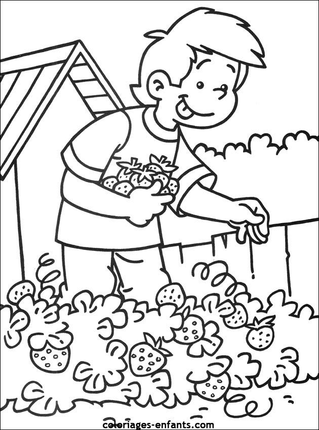 97 dessins de coloriage l gumes maternelle imprimer - Coloriage nature a imprimer ...