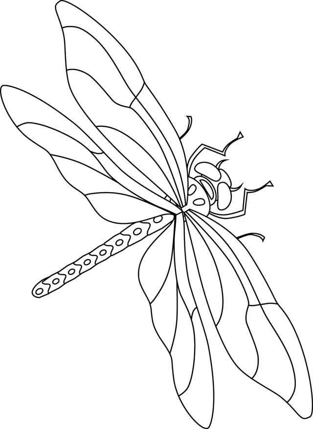 105 dessins de coloriage libellule imprimer - Photo de libellule a imprimer ...