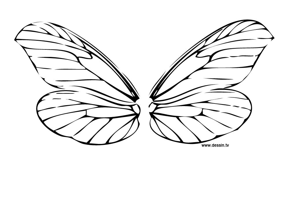 dessin libellule à imprimer