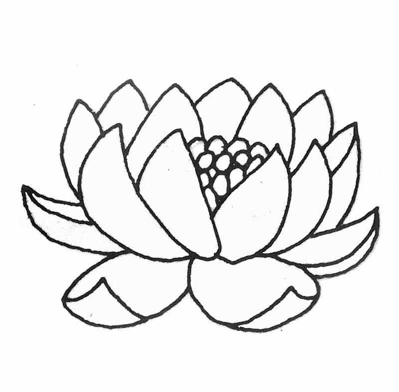 dessin à colorier libellule imprimer