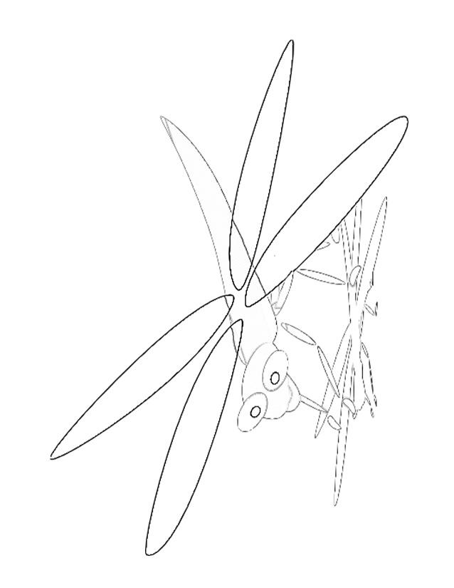 dessin à imprimer libellule