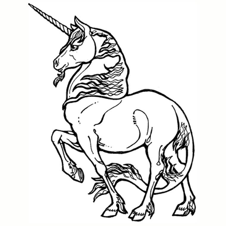 dessin licorne à imprimer