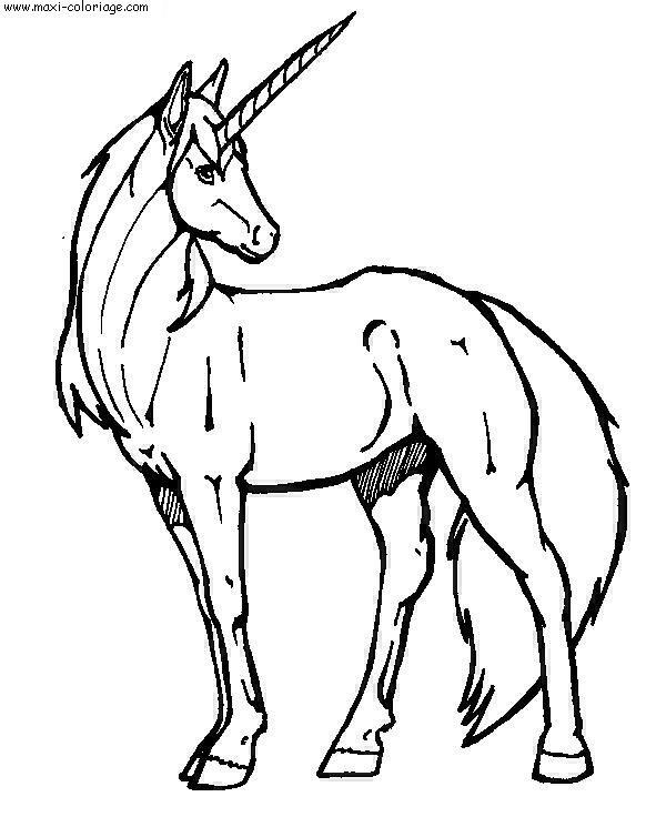 coloriage à dessiner winx licorne