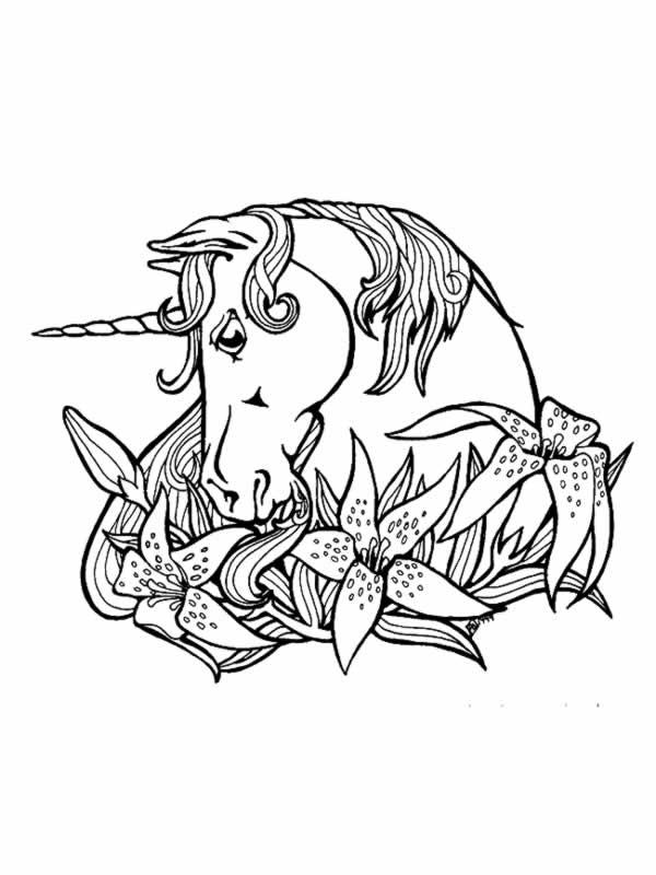 colorier une licorne