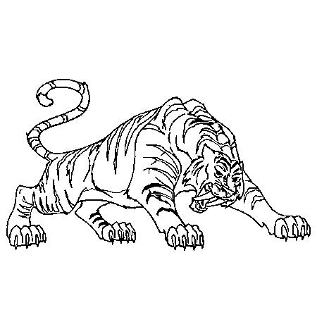 19 dessins de coloriage lion et tigre imprimer - Dessin de sabre ...