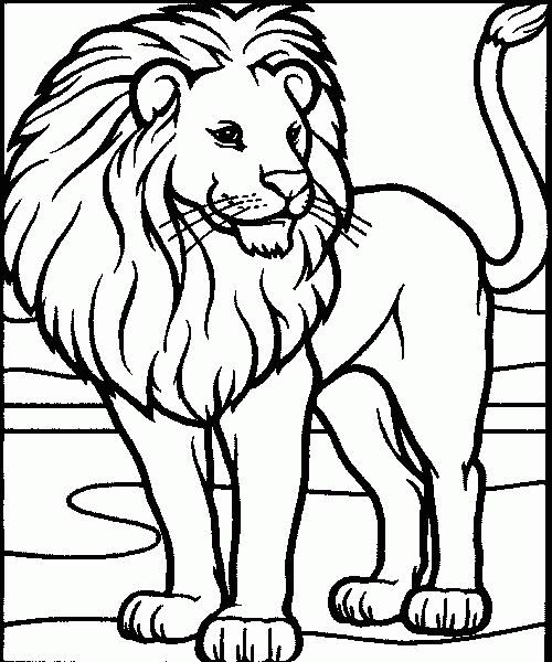 coloriage lion simba
