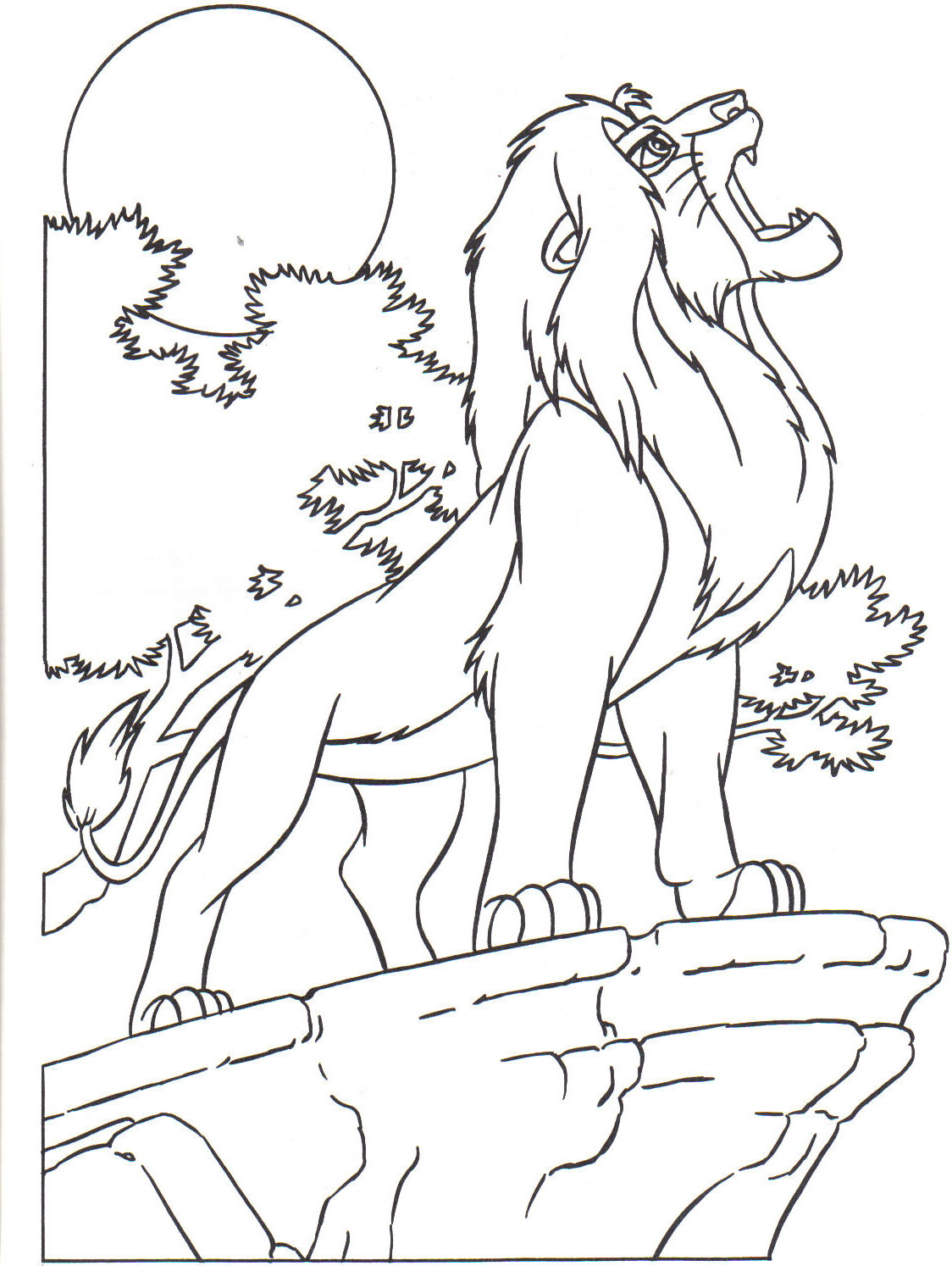 Lion Qui Rugit Coloriage Taraba Home Review