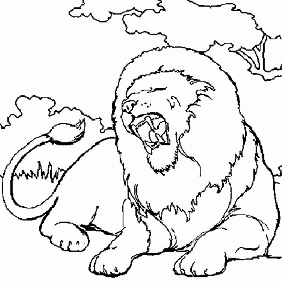 Coloriage un lion - Coloriages lion ...