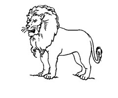 124 Dessins De Coloriage Lion A Imprimer