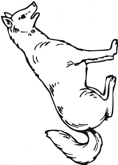 dessin le loup qui n'aimait pas noel