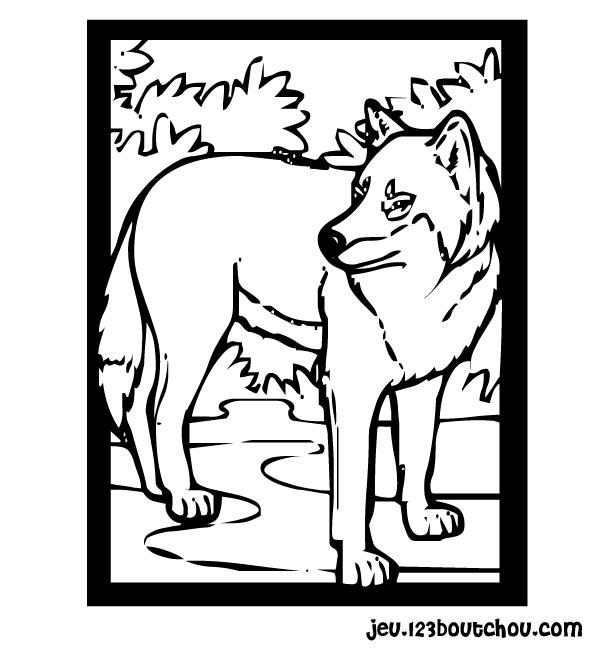 jeux coloriage à dessiner loup