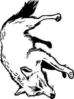 coloriage à dessiner loup garou