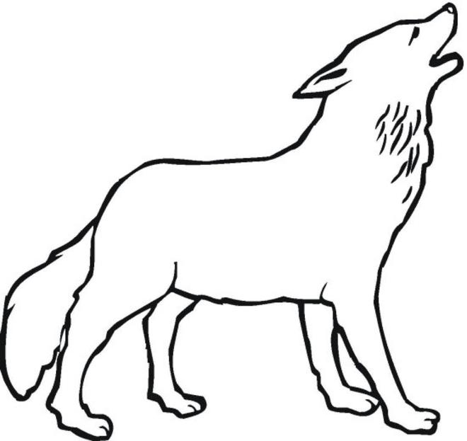 dessin à colorier loup à imprimer