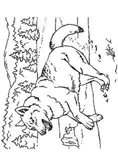 coloriage le loup et les sept cabris
