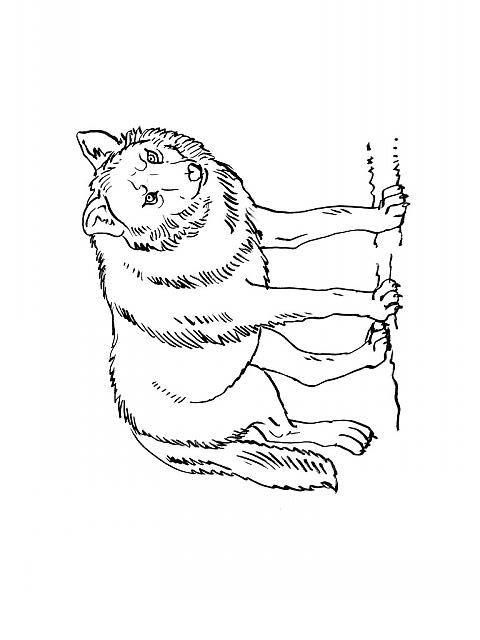 Coloriage ã Dessiner Du Loup Et Les 7 Chevreaux