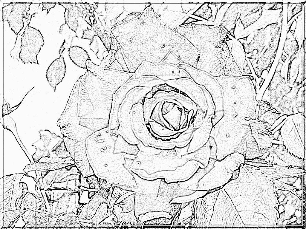 dessin à colorier magique addition ce2 à imprimer gratuit