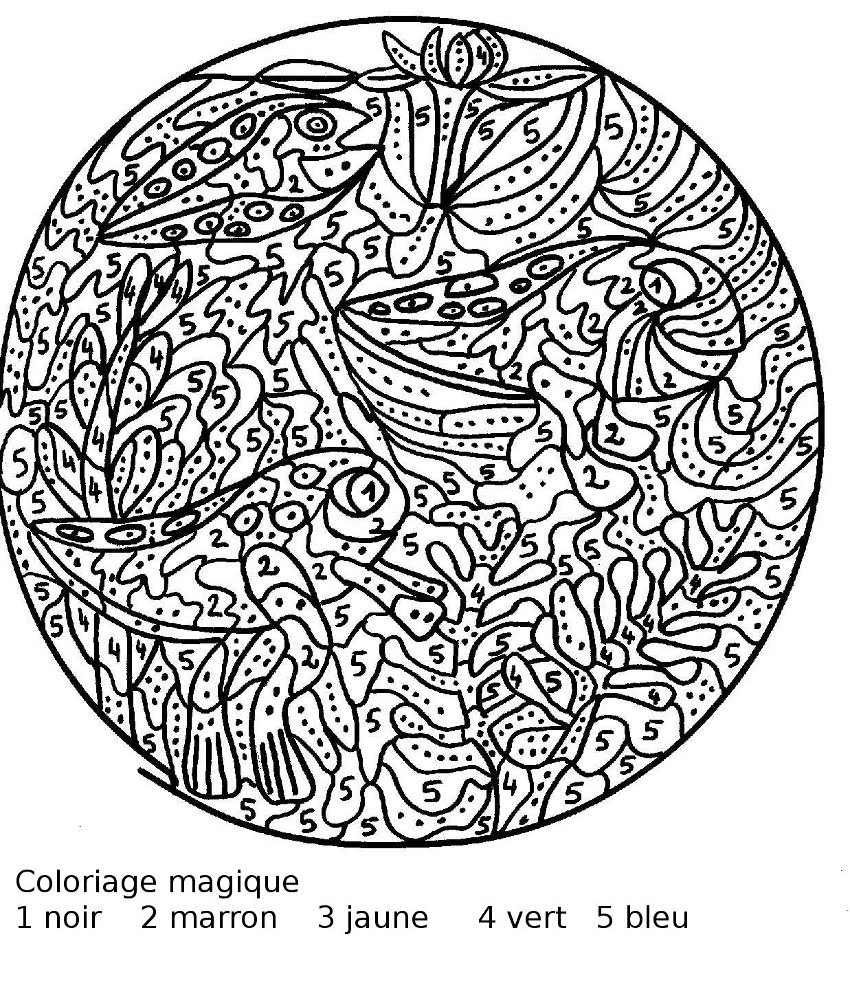 Coloriage magique tres difficile en ligne - Coloriage colorier ...