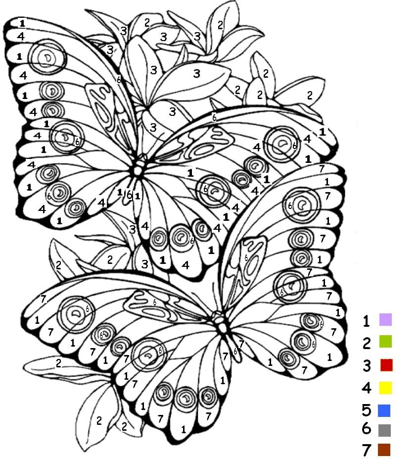 coloriage à dessiner magique papillon maternelle