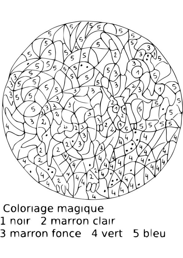Coloriage Magique Quadrillage