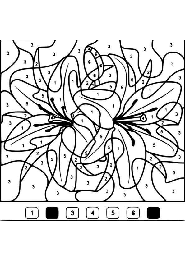 coloriage magique 6eme imprimer