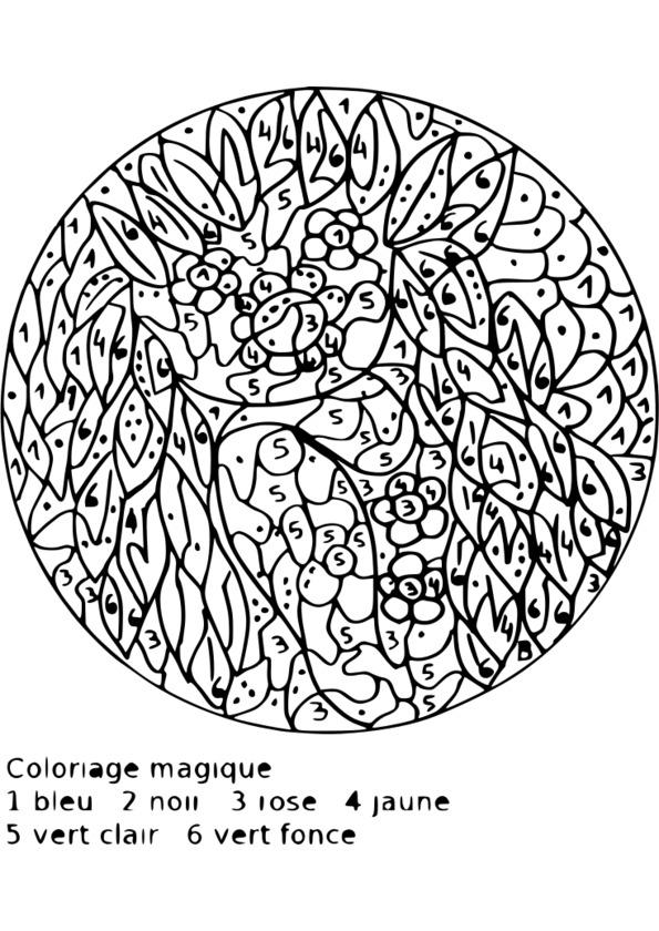 Coloriage magique pour 6eme - Dessin interactif ...
