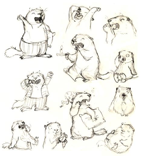 coloriage à dessiner d'une marmotte