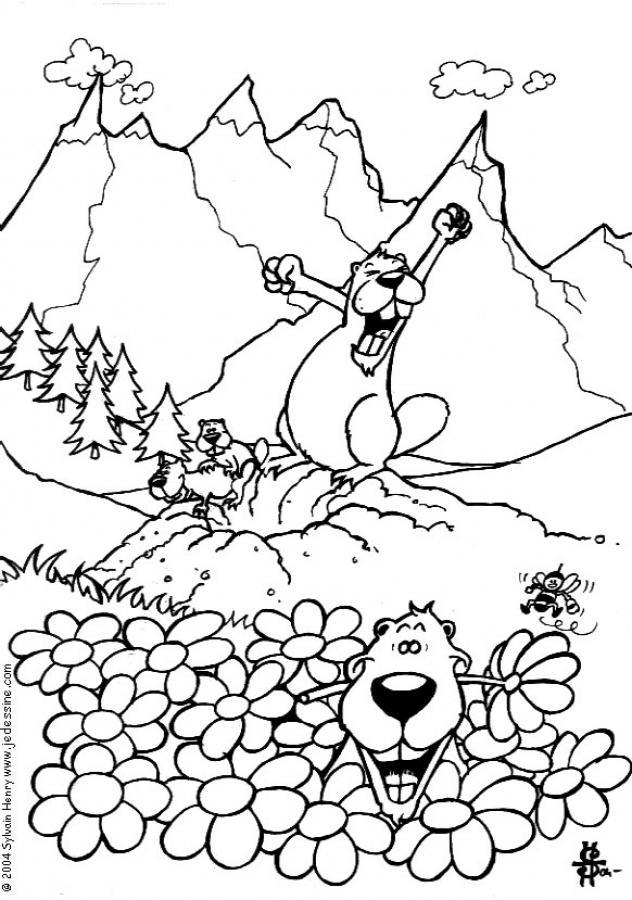 coloriage à dessiner marmotte montagne