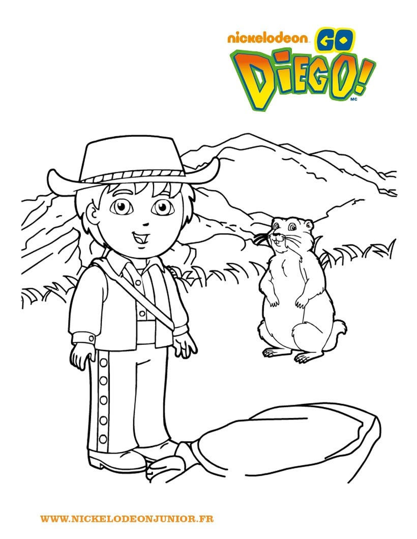 dessin à colorier marmotte