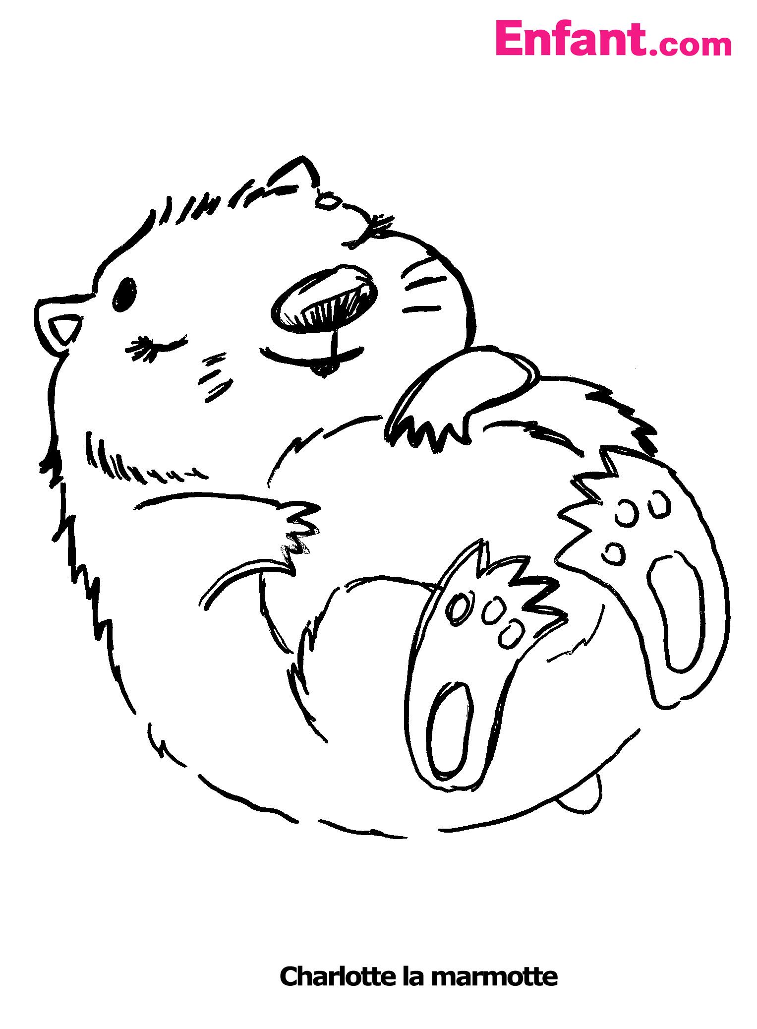 Coloriage de marmotte - Coloriage colorier ...