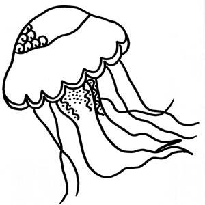 coloriage � dessiner meduse imprimer