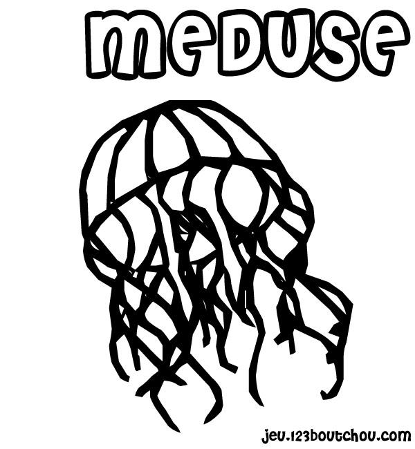 coloriage � dessiner radeau de la m�duse