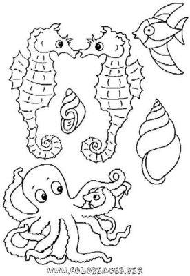 Dessin colorier etoile de mer a imprimer - Etoile de mer coloriage ...